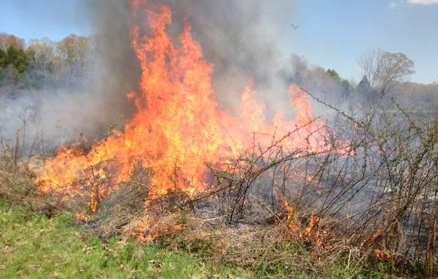 Coldwater Prescribed Burn Association
