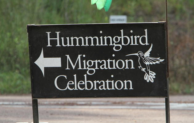 Hummingbird Tickets, FAQ and More