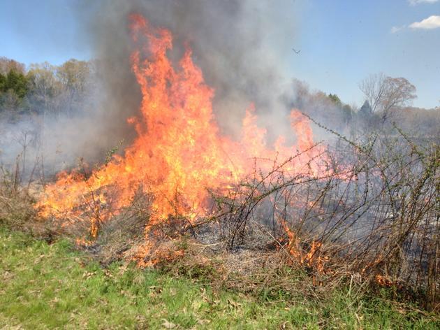 Coldwater Prescribed Burn Association