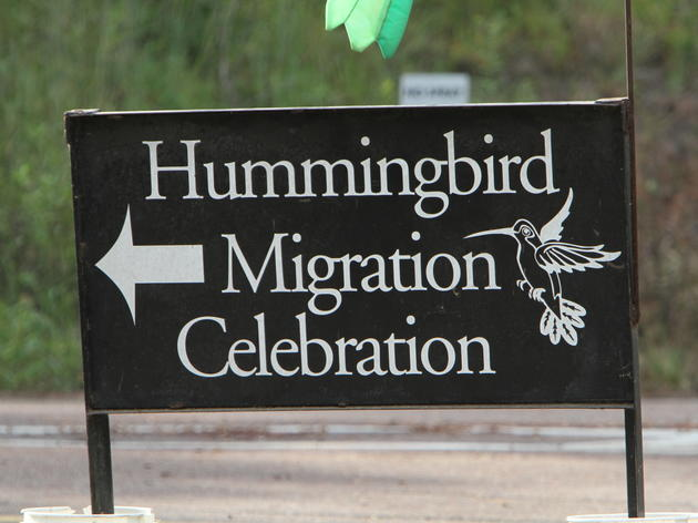 Hummingbird Tickets, FAQ and More