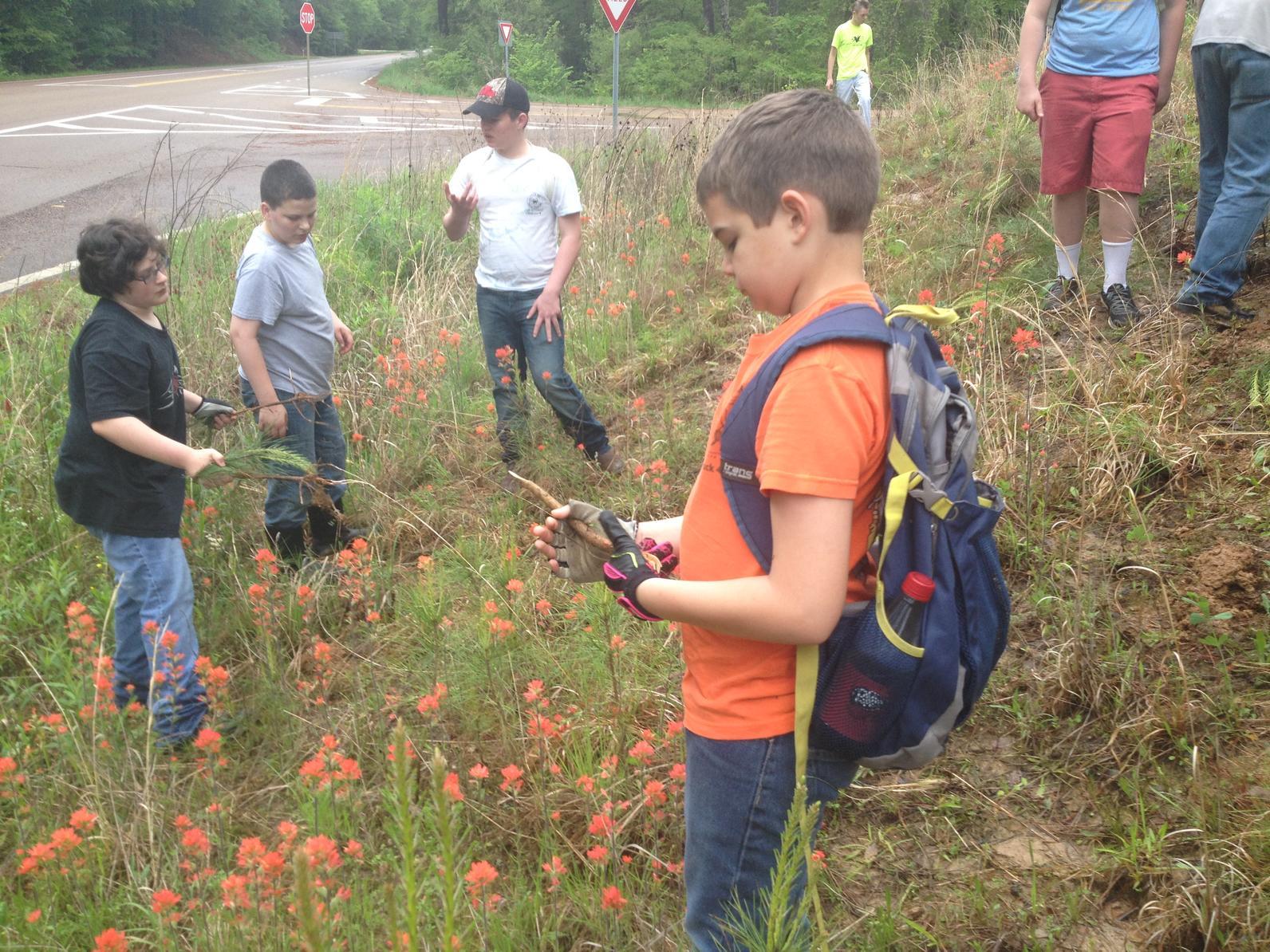 Boy & Girl Scout Badges | Strawberry Plains Audubon Center